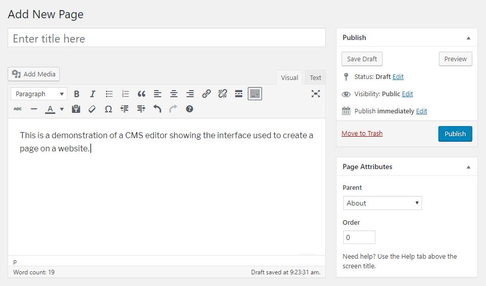 Example CMS editor
